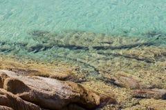 De Vakantieoverzees van de de zomerreis Royalty-vrije Stock Afbeeldingen