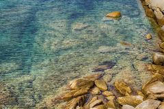 De Vakantieoverzees van de de zomerreis Stock Afbeeldingen