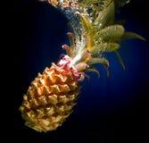 De val van de ananas in water Stock Fotografie