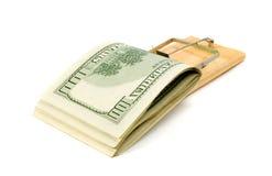 De val van de muis met geld royalty-vrije stock afbeeldingen