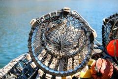 De val van de zeekreeft Royalty-vrije Stock Afbeeldingen