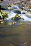 De val van het water van een kreek Stock Afbeelding