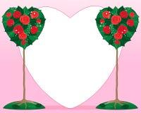 De valentijnskaart nam struik toe Stock Foto