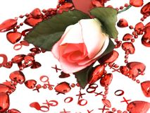 De valentijnskaart nam toe Royalty-vrije Stock Foto