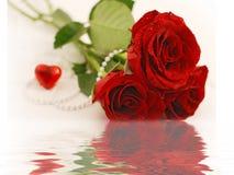 De valentijnskaart nam toe Stock Afbeeldingen