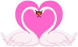 De valentijnskaart van zwanen Stock Foto's