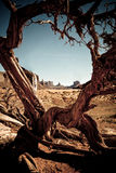De Vallei Arizona van het monument Royalty-vrije Stock Afbeeldingen