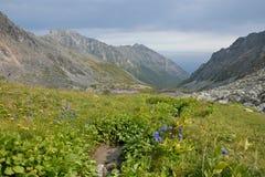 De vallei in de bergen van de Barguzin-rand bij Meer Baikal Stock Afbeelding