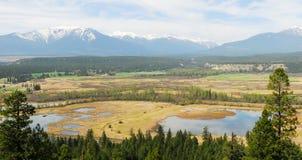 De vallei en de bergmening van de rivier Stock Afbeeldingen