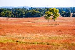 De vallei smeedt Nationaal Historisch Park Royalty-vrije Stock Fotografie