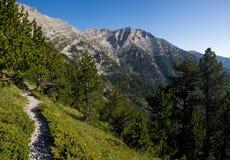 De vallei van bergolympus in Griekenland stock foto's