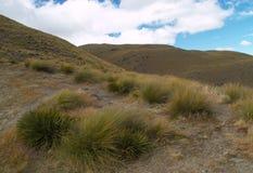De vallei van Cardrona Royalty-vrije Stock Foto's