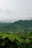 De vallei van Chimory Stock Afbeeldingen