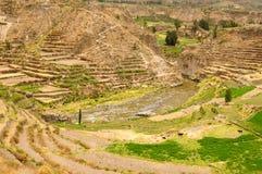 De Vallei van Colca, Peru Royalty-vrije Stock Afbeeldingen