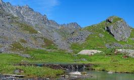 De Vallei van de aartsengel, Hatcher Pas, Alaska Royalty-vrije Stock Foto's