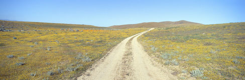 De Vallei van de antilope, Royalty-vrije Stock Foto's
