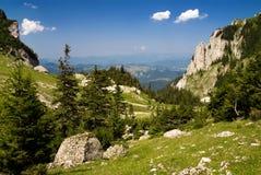De vallei van de berg in Roemenië Stock Foto's