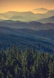 De vallei van de Carpatianberg V2 Stock Foto