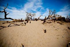 De vallei van de dood Stock Foto