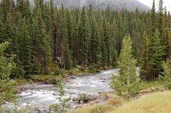 De vallei van de rivier in regen Royalty-vrije Stock Afbeeldingen