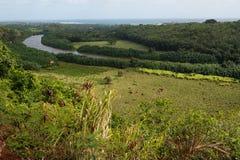 De Vallei van de Rivier van Wailua Stock Foto