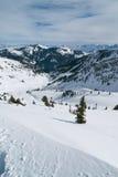 De vallei van de winter Stock Foto's