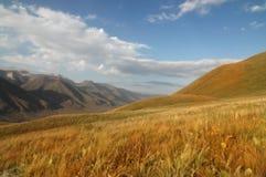 De vallei van de zomer met bergen Stock Foto's