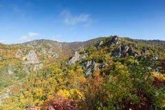 De Vallei van Donau in de herfst; Oostenrijk Stock Afbeelding