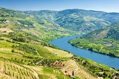 De Vallei van Douro royalty-vrije stock foto