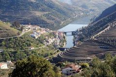 De Vallei van Douro - het gebied van de postWijngaard in Portugal. Royalty-vrije Stock Foto's