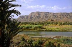De vallei van Draa Royalty-vrije Stock Afbeelding