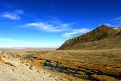 In de vallei van een bergrivier Stock Foto