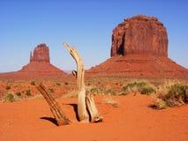 De Vallei van het monument - de Vuisthandschoenen Stock Foto's