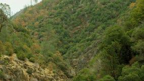 De vallei van het stroomgras openbaart stock videobeelden