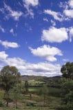 De Vallei van Howqua, land Victoria Stock Foto's