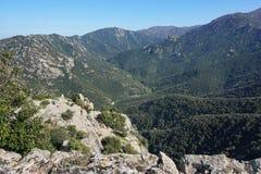 De vallei van Lavail de Pyreneeën Orientales Frankrijk Stock Afbeelding