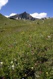De vallei van Maira Stock Foto's