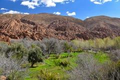 De vallei van Marokko Dades Stock Fotografie