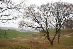 De vallei van Pajauta in Kernave Stock Afbeeldingen