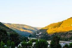 De vallei van rivierdouro, Portugal Stock Fotografie