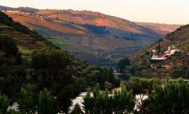 De vallei van rivierdouro, Portugal Royalty-vrije Stock Foto