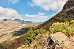 De vallei van Tamaino, Tenerife Stock Afbeeldingen