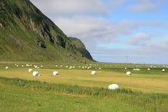 De vallei van Unstad met hooibalen Stock Afbeelding