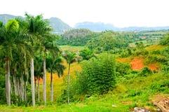 De vallei van Vinales Royalty-vrije Stock Afbeelding