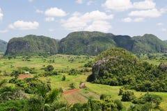 De vallei van Vinales in Cuba Stock Fotografie