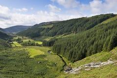 De vallei van Wicklow stock fotografie