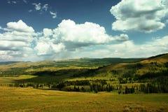 De vallei van Yellowstone Stock Afbeelding