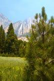 De Vallei van Yosemite Stock Afbeelding