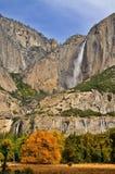 De Vallei van Yosemite in de Herfst Stock Afbeelding