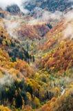 De valleilandschap van de herfst Stock Afbeelding